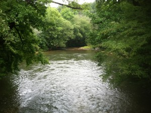 Upstream of the Devil's Elbow, Dawsonville,