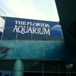 Family fun at the Florida Aquarium in Tampa