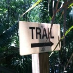 Trail hike: Black Bear Wilderness Area