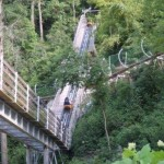 We took an en epic ride on the Smoky Mountain Alpine Coaster in Pigeon Forge, Tennessee
