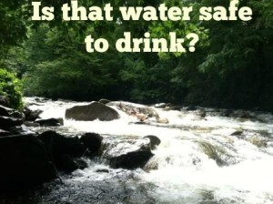 Is it safe to drink the water in the Great Smoky Mountain National Park?