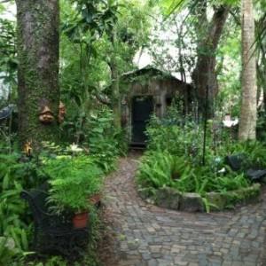 Secret Garden on St. George Street