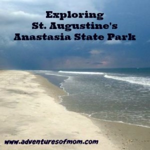 Anastasia State Park in St. Augustine, Florida