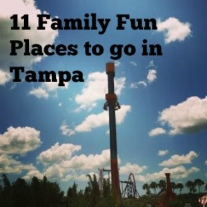 Things to do in tampa fl dating night