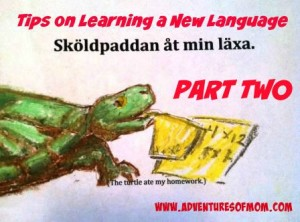The turtle ate my homework: useful tips on learning a new language