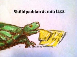 The turtle ate my homework: Lessons in Language Learning