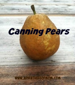 Canning a sand pear is easy.