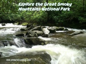Explore the Great Smoky Mountains National Park