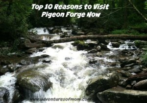 Pigeon Forge Top 10