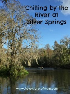 Silver Springs State Park is a good place to chill out and unwind