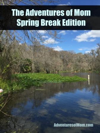 Tips and Ideas to make your family Spring Break the best one ever!