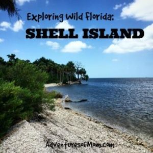 This Gulf island at the mouth of Crystal River is made up of oyster shells, thus the name: Shell Island.