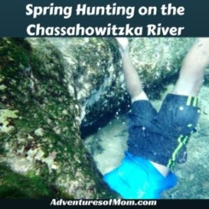 Adventures on the Chassahowitzka River