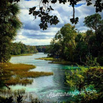 There are numerous springs on the Rainbow River, perfect for Florida Spring Hunting!