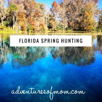 Florida Spring Hunting