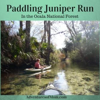 Paddling Juniper Run in the Ocala National Forest