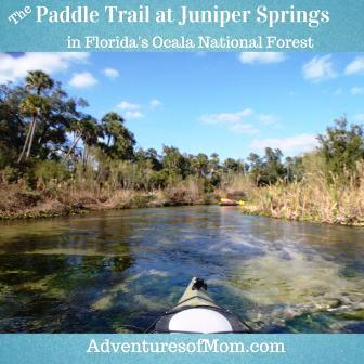 Adventures of Mom on the Juniper Run Paddle Trail in the Ocala National Forest